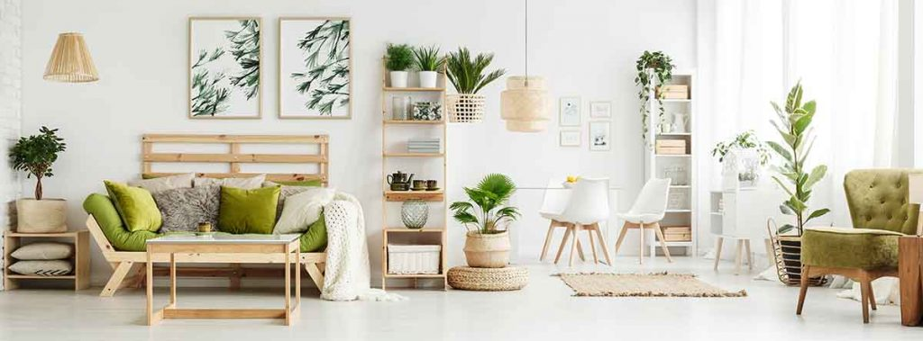 35 Essential Types of Furniture In The Living Room 32 Plants for living room