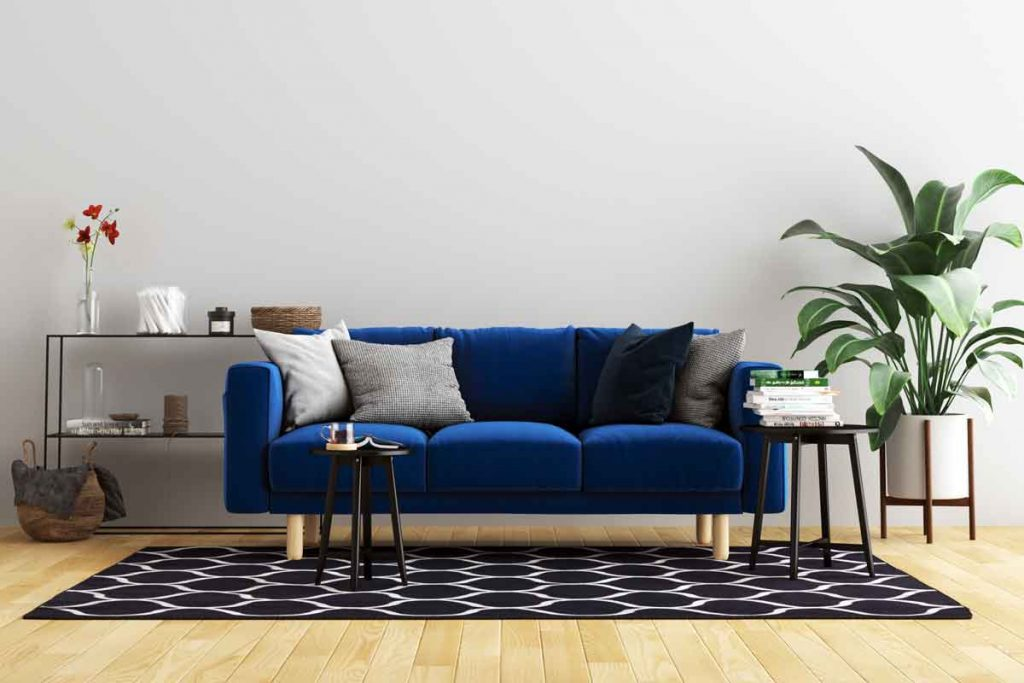 color area rug goes with a navy blue sofa